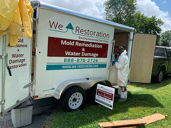 Mold Remediation Besthesda MD