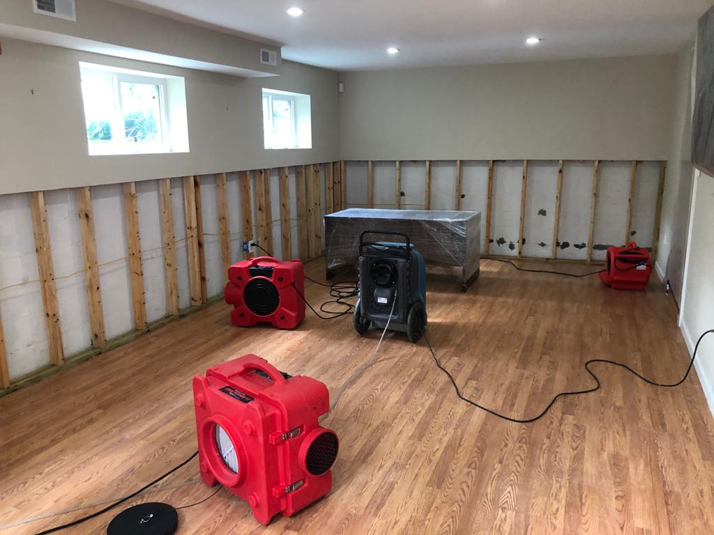 Mold Remediation Silver Spring, MD